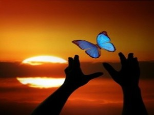 butterfly_hand